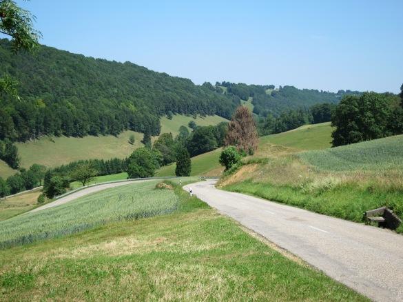 Winding Hills